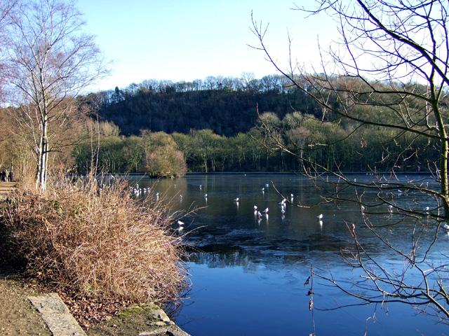 Compstall Lake