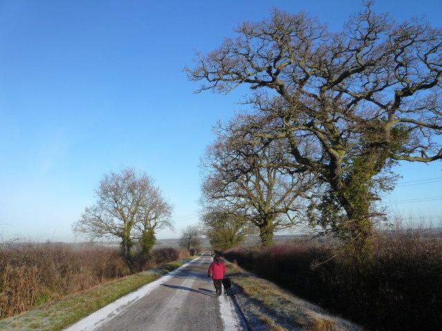 Walking towards Newton Blossomville
