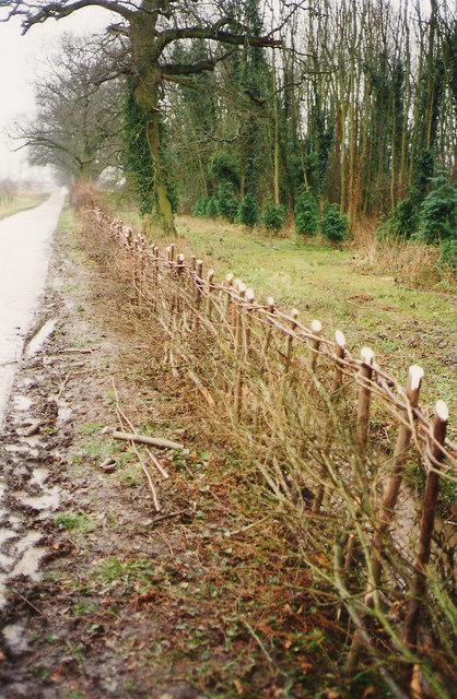 Hedge Laying 1995