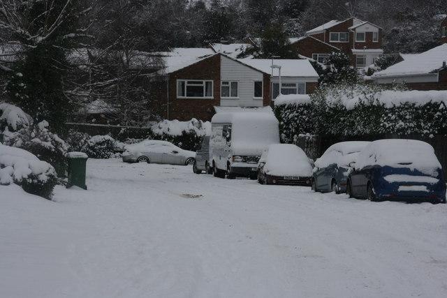 Snow, St David's Rd