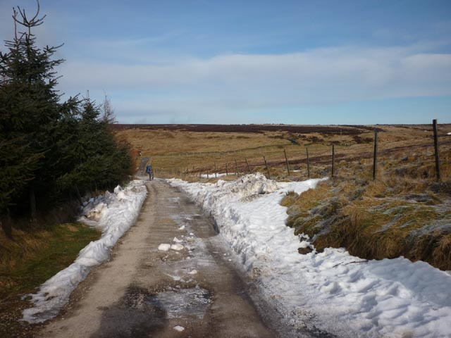 The lane to Orchan House Farm