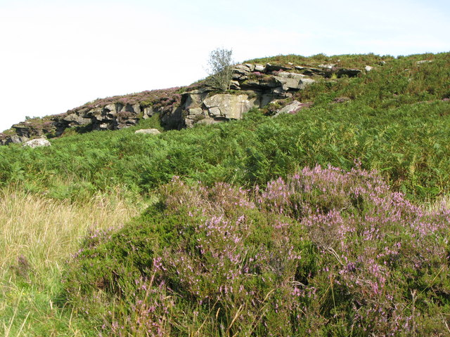 Heather and bracken below Banno Crags