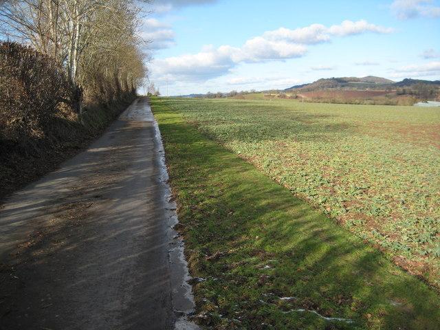Road near Berrow Farm