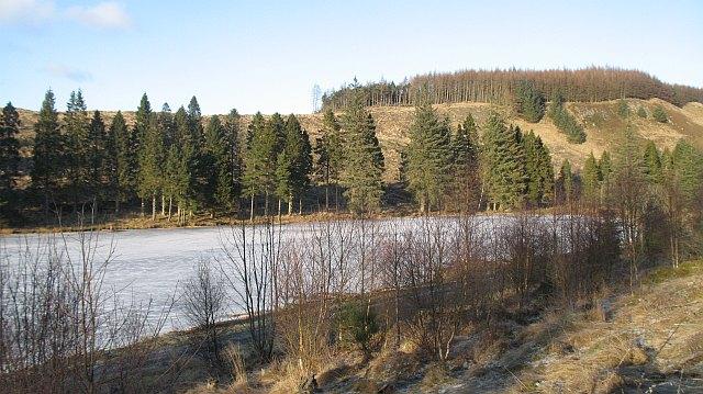 Clear felled area, Ledcrieff Wood