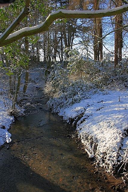 Otter Hill Beck