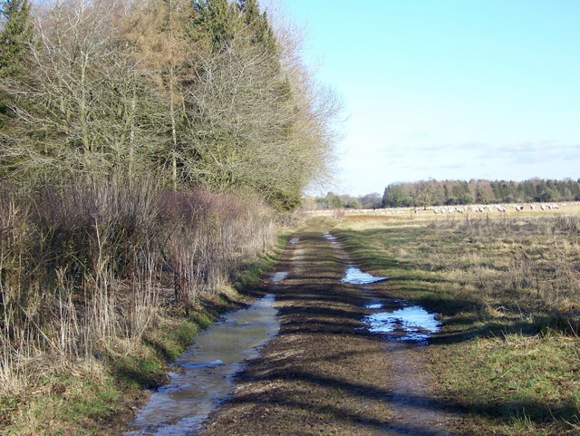 Restricted byway, Holwell