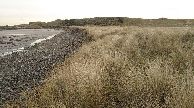 Dunes, White Sands