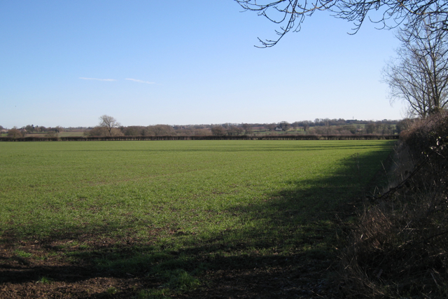Field east of Ham Farm