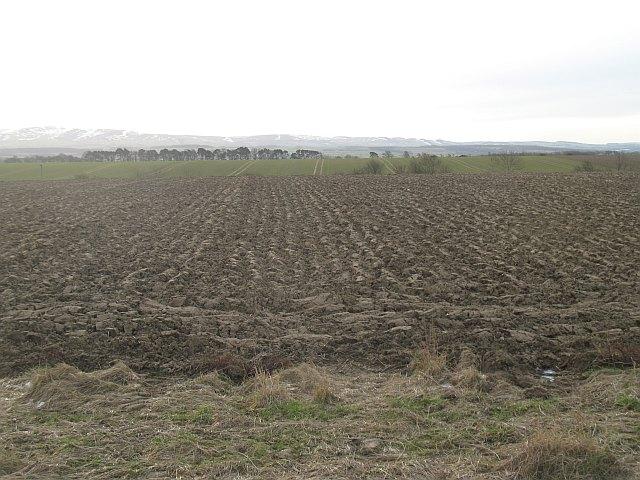 Ploughed field, Ugstonrigg