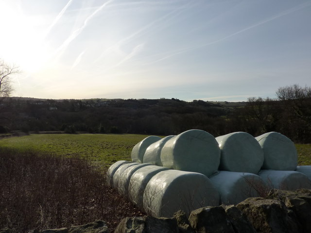 Fields between Totley and Dore, Sheffield