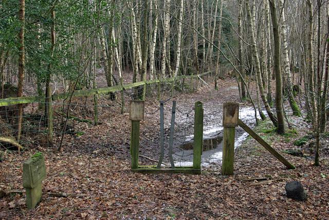 Footpath gate, Ashdown Forest