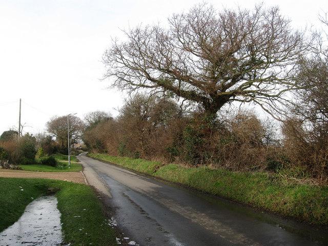 Peelings Lane