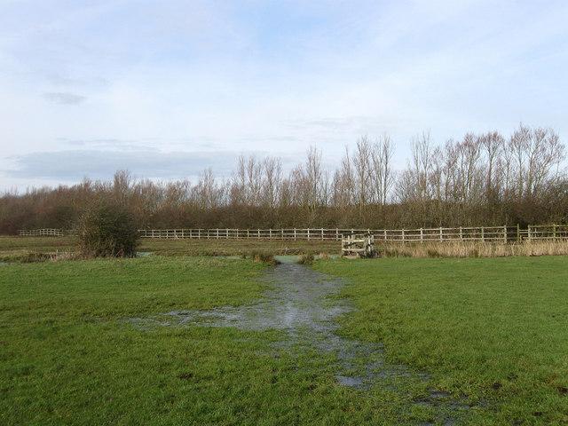 Footpath to Chilley Farm