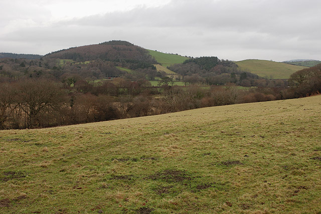 Field south of the Afon Rheidol
