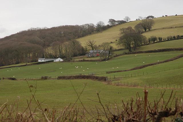 Fields around Pwll-clai farm