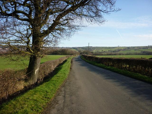 Palterton Lane near Deepdale Farm