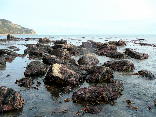 Branscombe rocks looking east