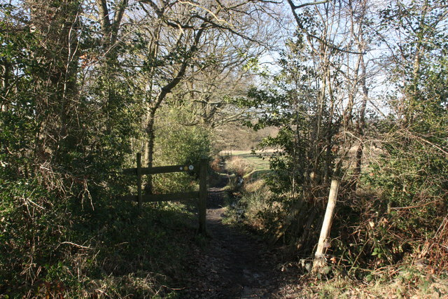 High Weald Landscape Trail, near Hartfield