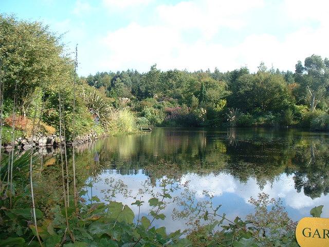 Glenwhan Gardens, Dunragit
