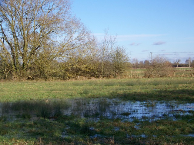 Waterlogged field near Lechlade on Thames
