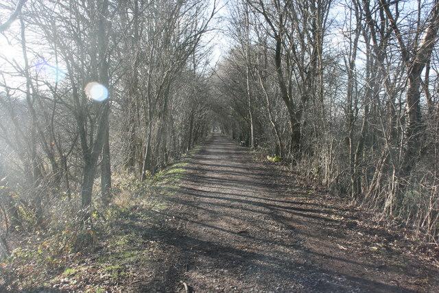 Forest Way near Hartfield