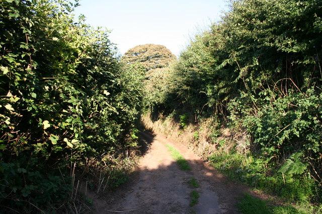 Overton Heath Lane