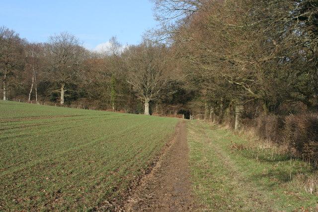 Bridleway to Chartners Wood