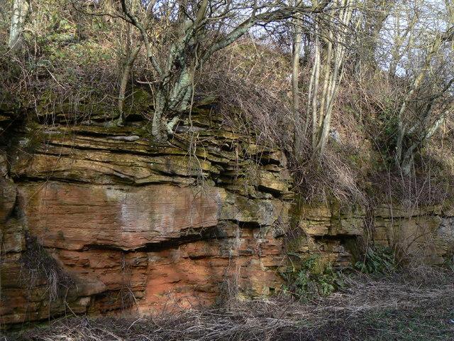 Bedded sandstone