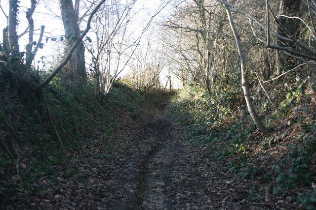 Sunken bridleway near Chartners Farm