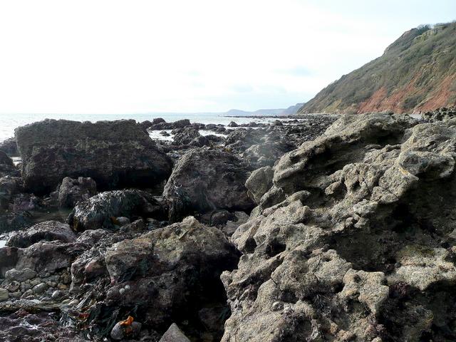 Branscombe Ebb rocky coast