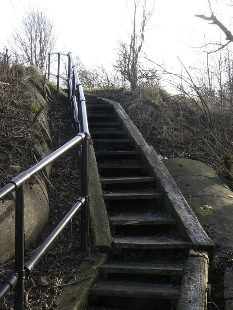 Steps to the trail