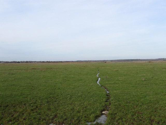 Inner Marsh