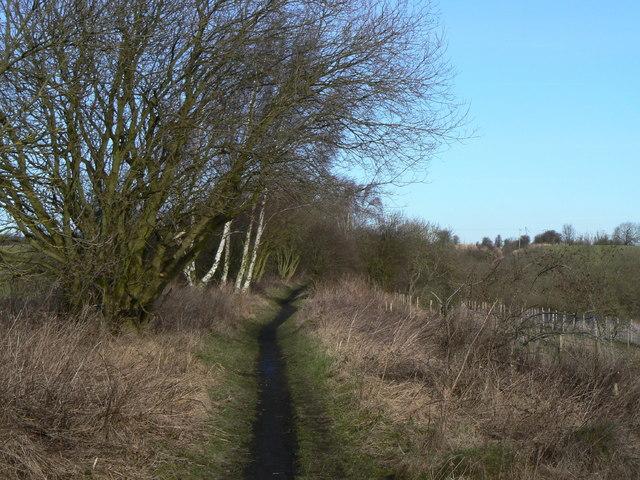 Skegby Track