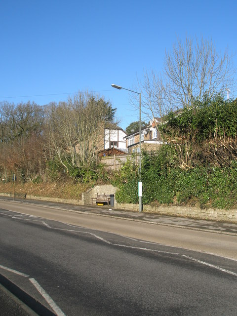 Lamppost in Hindhead Road