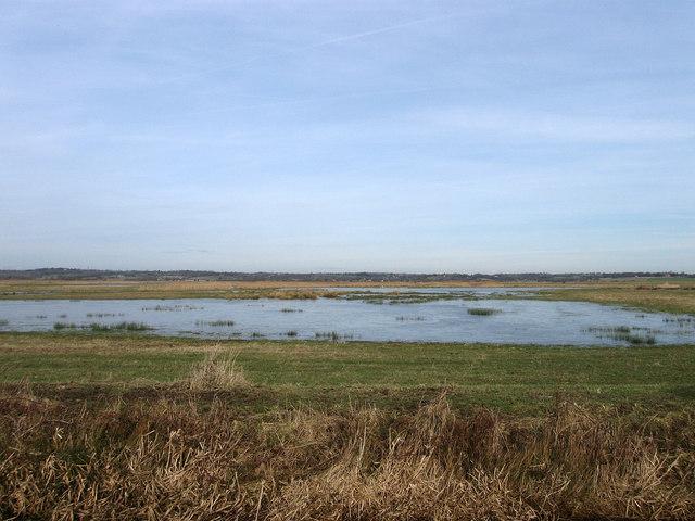 Further Marsh