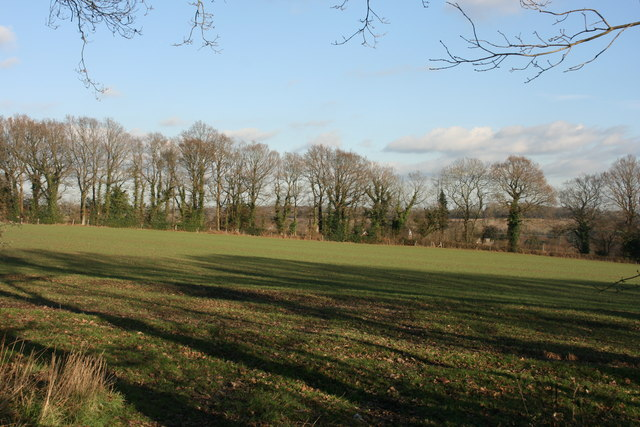 Field by the bridleway north of Chartners Wood