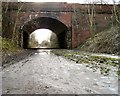 SJ9594 : Under Dowson Road by Gerald England