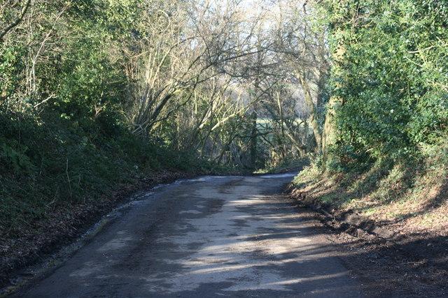 Lane south of Butcherfield Lane