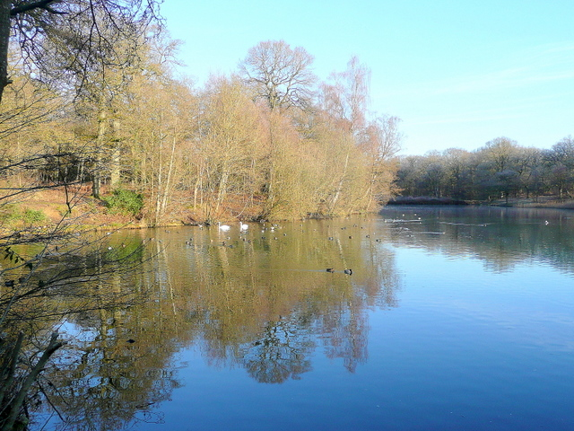Cannop upper pond 2