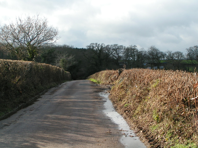 Lane heading to Aylesbeare