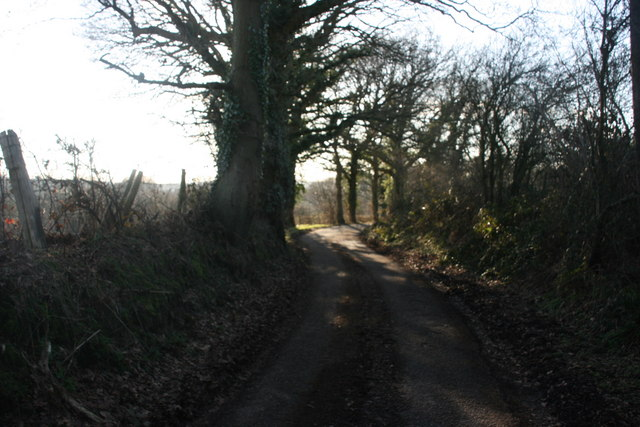 Lane to St Ives Farm