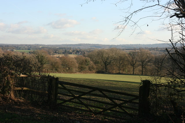 View SW from the lane to St Ives Farm