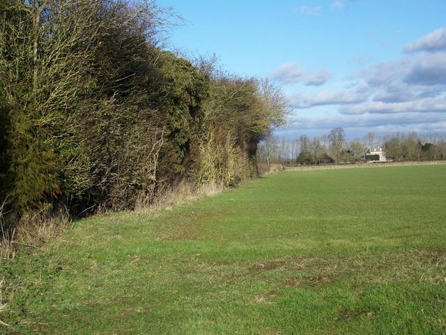Footpath, Buscot Wick