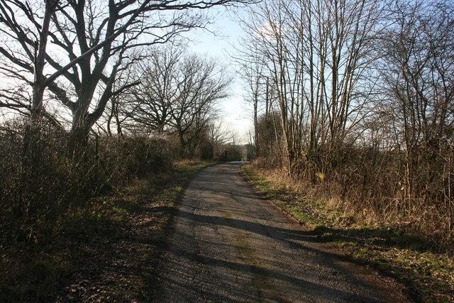 Lane to St Ives Farm