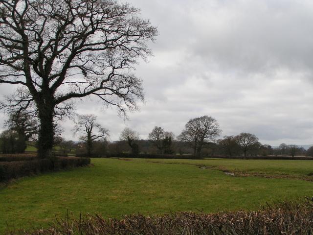 Fields near Marsh Green