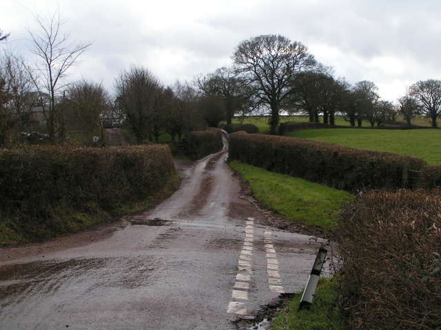 Lane to Aylesbeare