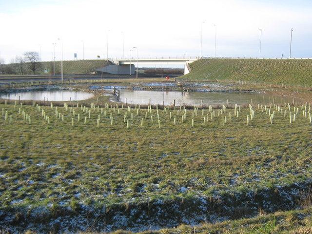 Balancing ponds at Longnewton A66 junction