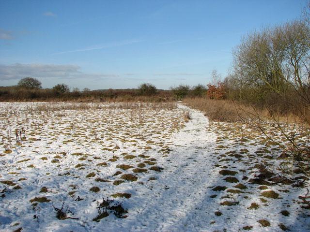 Path through meadow by Oaks Farm