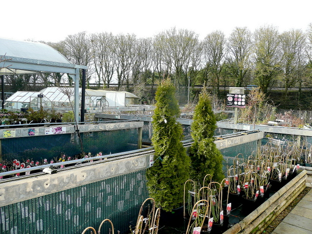 Plant area at Slades Countrywise