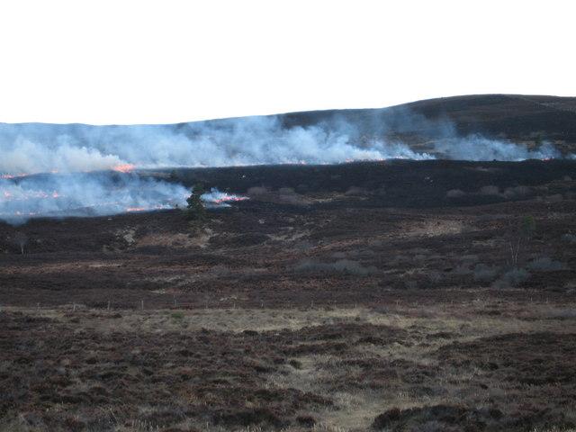 Heather burning on Hill of Aitnoch